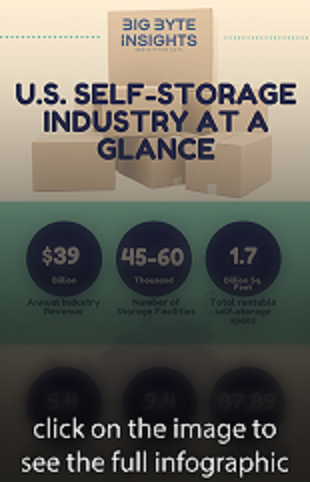 Self Storage Infographic